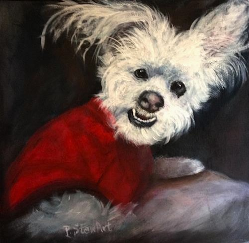 Fluffy White Dog Painting